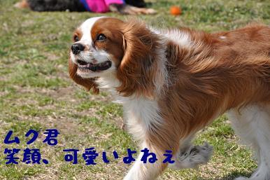 20090321_川原_05