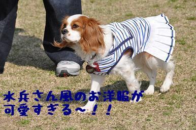 20090321_川原_08