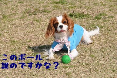 20090321_川原_03