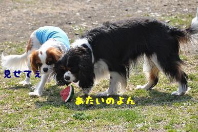 20090321_川原_06