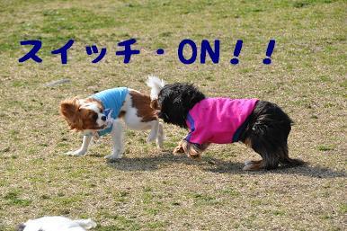 20090321_川原_21