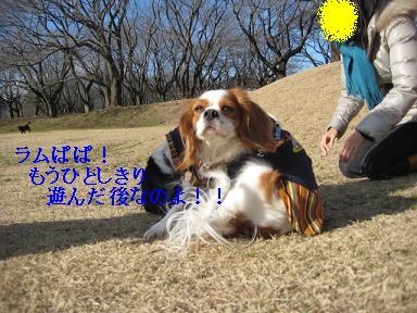 20080110_川原_04