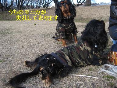 20080110_川原_16