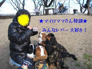20080110_川原_15
