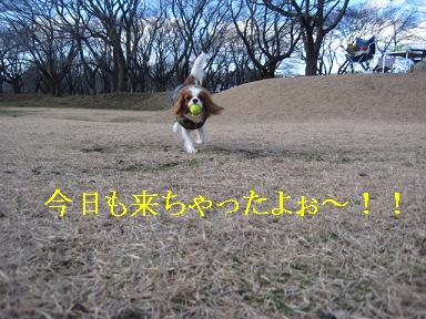 20080110_川原_01