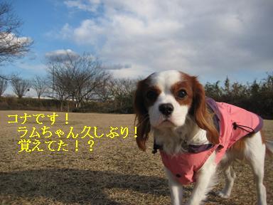 20080110_川原_10