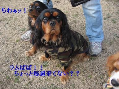 20080110_川原_02