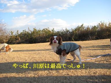 20080110_川原_21
