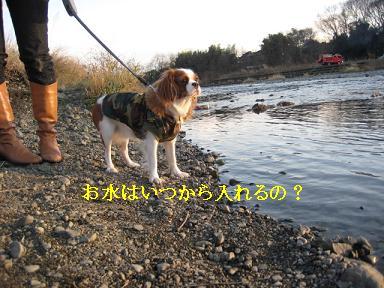 20080110_川原_23
