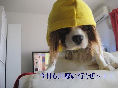 20090125_川原_01