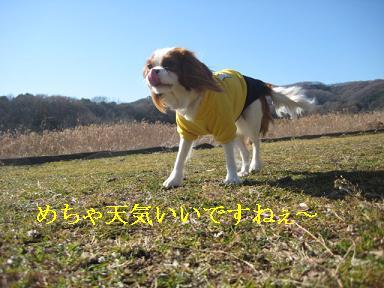 20090125_川原_02