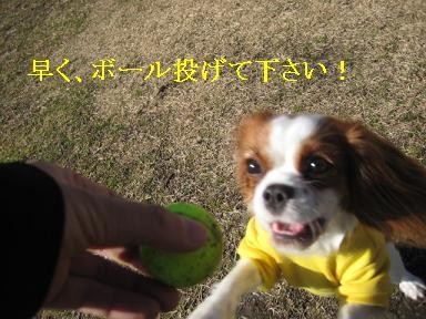 20090125_川原_03