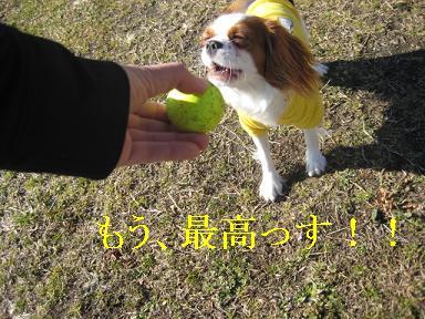 20090125_川原_04