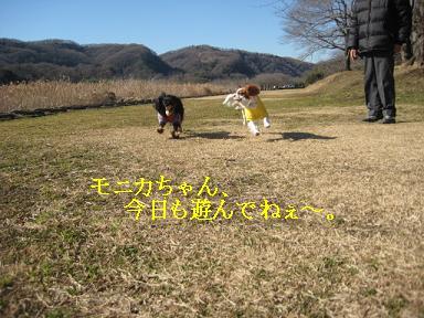 20090125_川原_05