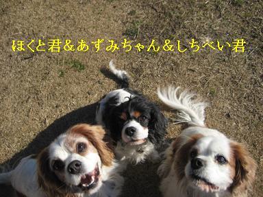 20090125_川原_09