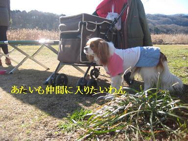 20090125_川原_12