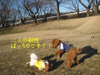 20090125_川原_19