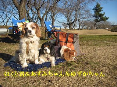 20090125_川原_22