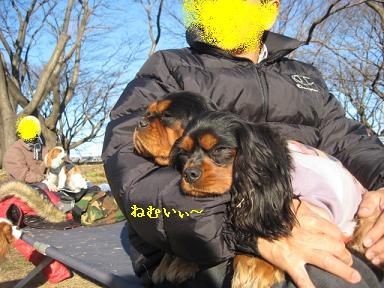 20090125_川原_24