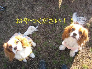 20090125_川原_26