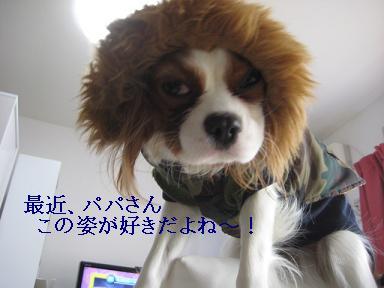 ラムがドライアイ_02