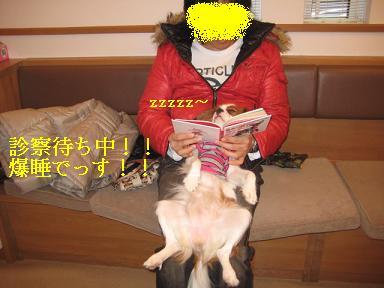 ラムがドライアイ_08