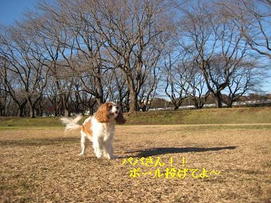 20081207_川原_08