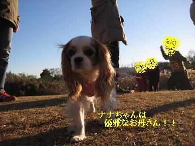 20081207_川原_10