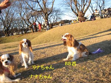 20081207_川原_12