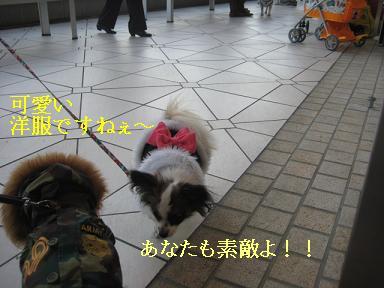 横浜ベイクォータ5