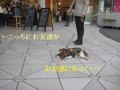 横浜ベイクォータ6