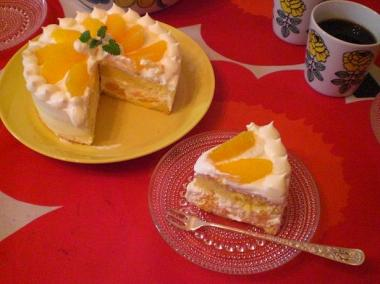 orange cake×TEEMA yellow**