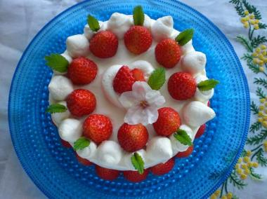 nyugakuiwai*cake/sakura