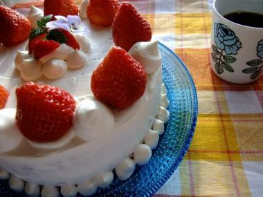 X'mas cake(rensyu)