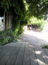 iwaikagu3.jpg