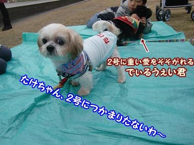 2011_1210_110735-CIMG6543.jpg