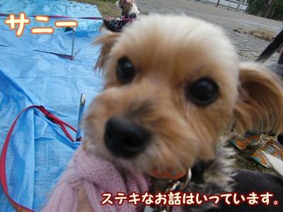 2011_1210_120922-CIMG6595.jpg