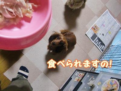 食べてあげますの!