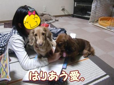 2012_0105_185514-CIMG7594.jpg