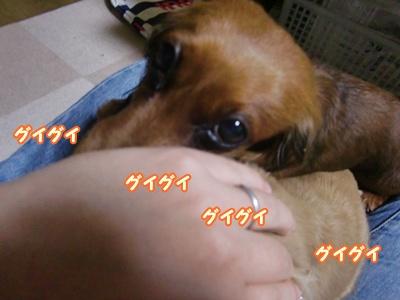 2012_0105_190908-CIMG7611.jpg