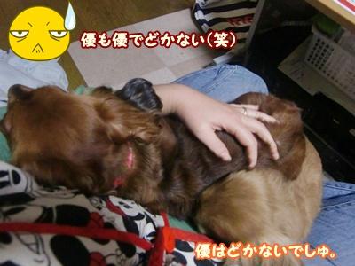 2012_0105_191309-CIMG7624.jpg