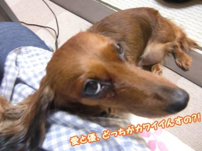2012_0107_123224-CIMG7643.jpg