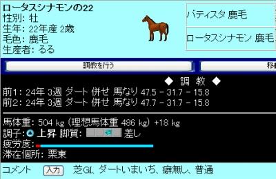 061022002.jpg