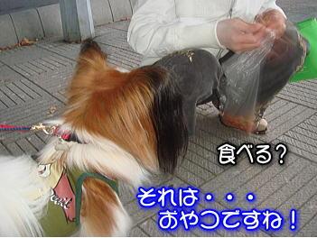 20071107201743.jpg