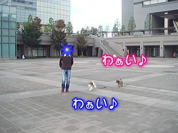 20071107201824.jpg