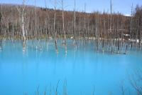 自然の青は神秘的なカンジがします