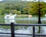 20061022.jpg