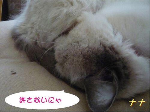 なな (3)