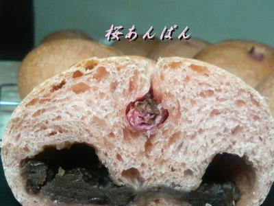 20080323桜あんぱん