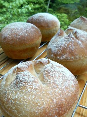 20080530蕎麦粉パン1